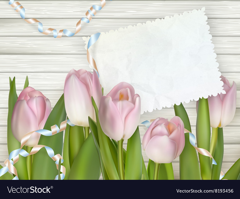 Old card and fresh tulips eps 10 vector