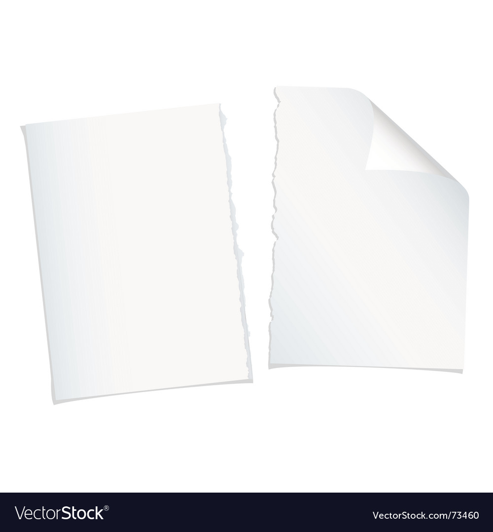 Single page torn blank vector