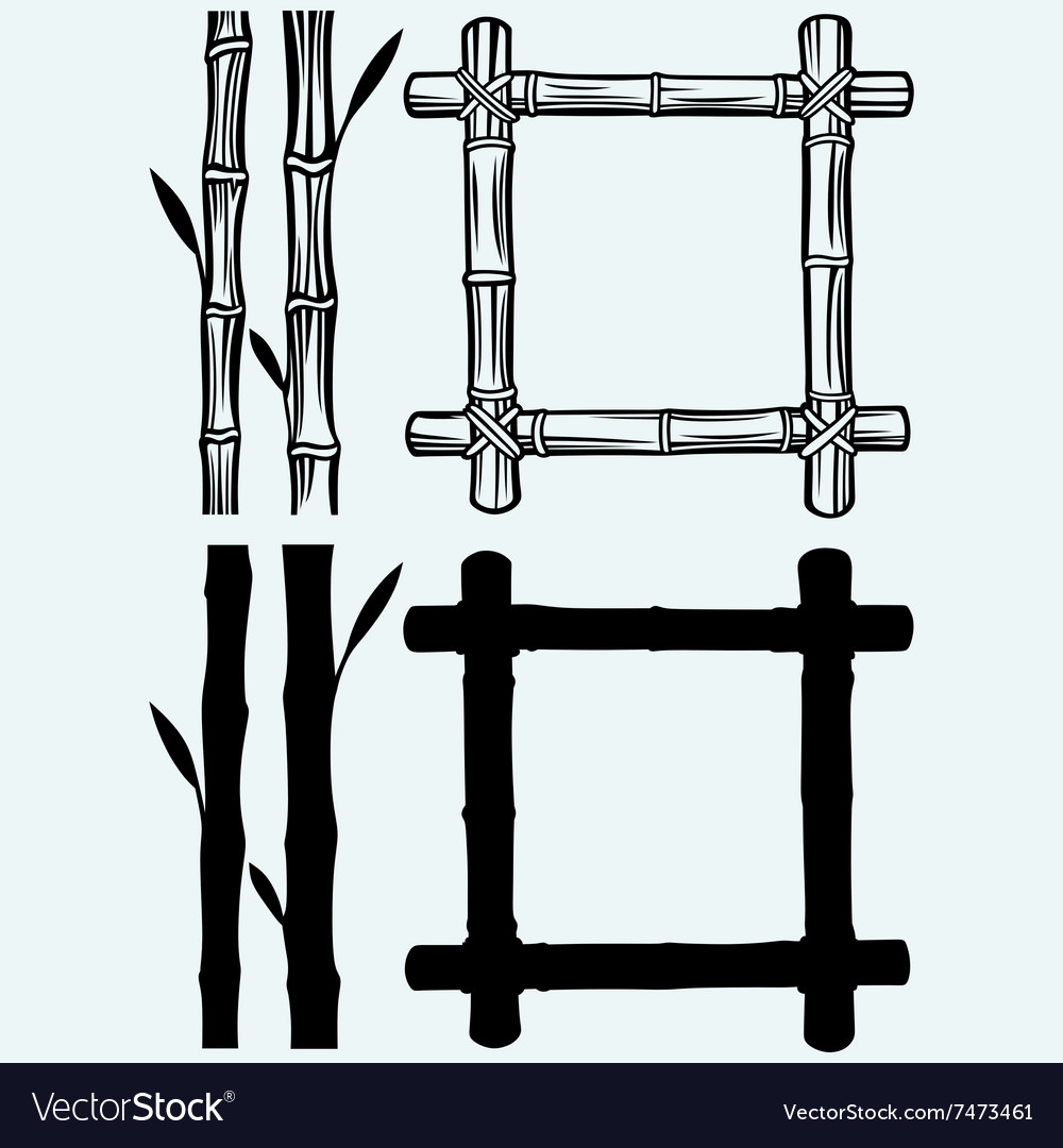 Frame of bamboo vector