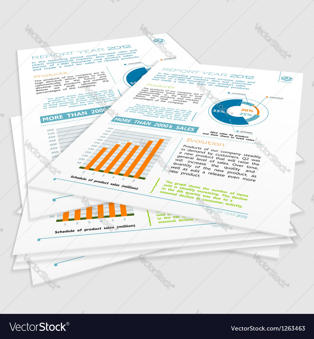 Company year report vector