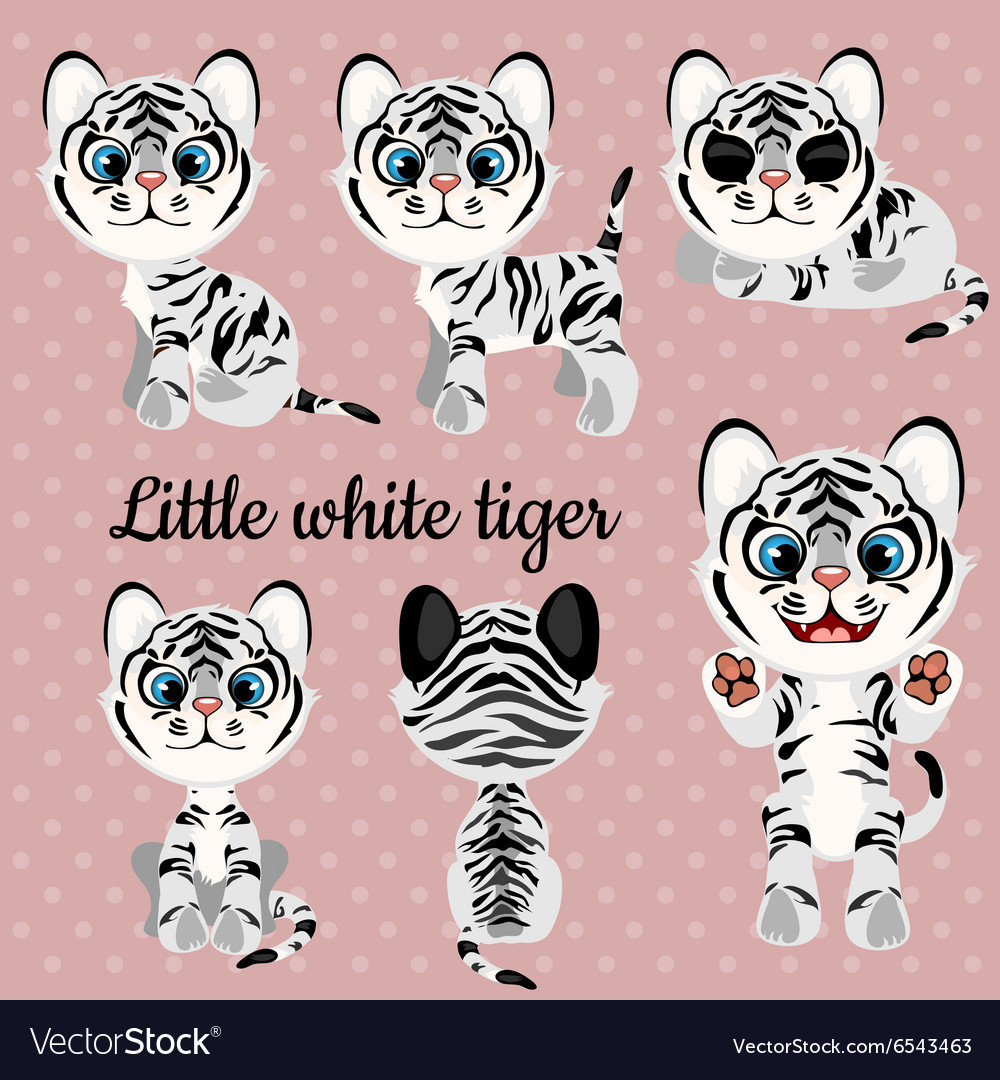 Set of emotions a little white tiger vector