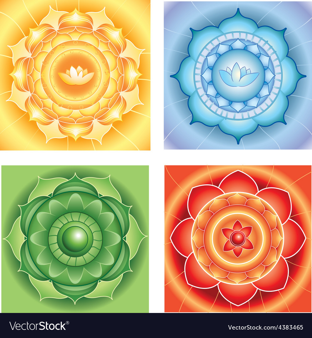 Bright abstract circle backgrounds mandalas of vector