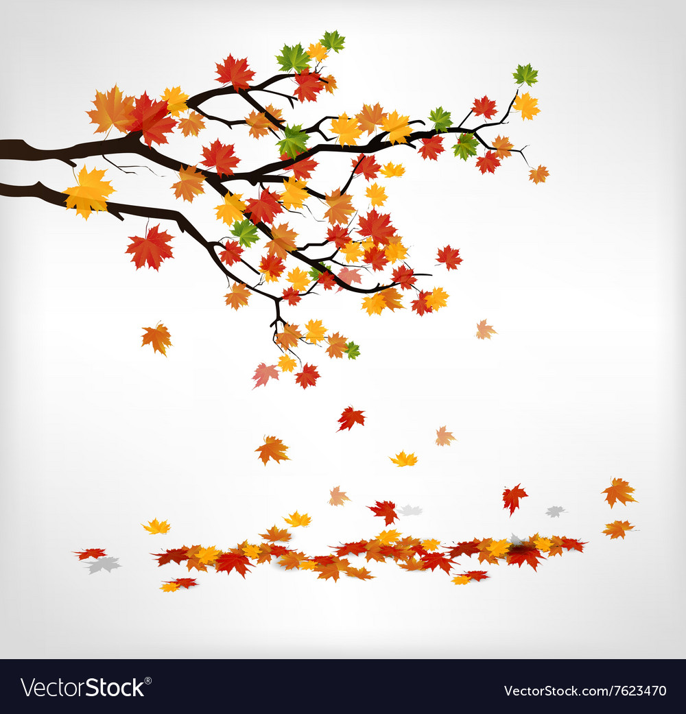 Autumn branch with falling leaves vector