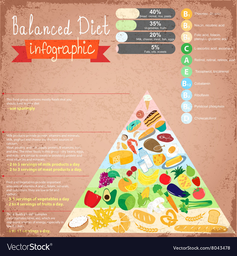 Health food infographic vector