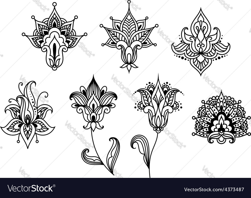 Abstract indian paisley floral design elements vector