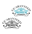 Guaranteed Premium calligraphic elements vector image vector image