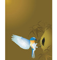 Weaver bird vector image