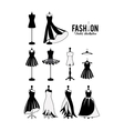 feminine fashion design vector image