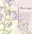 lily design card vector image