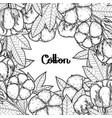 Graphic cotton plants vector image
