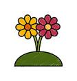 beautiful decorative flowers vector image