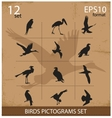 Set of silhouettes birds symbols vector image