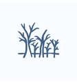 Tree with bare branches sketch icon vector image
