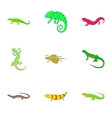 Amphibian icons set cartoon style vector image