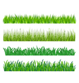 green grass elements vector image