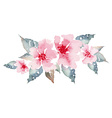 Spring flowers watercolor vector image vector image