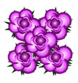 bouquet of pink roses icon vector image