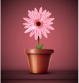 Flower in pot vector image