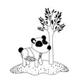panda cartoon next to the tree in black dotted vector image