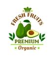 Fresh fruits poster Green avocado icon vector image vector image