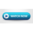 Watch Now button vector image