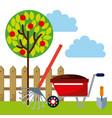 beautiful garden design vector image