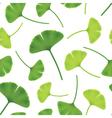 Leaves of ginkgo bilboa seamless vector image