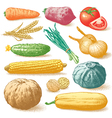Vegetables fruits and plants hand drawn vector image