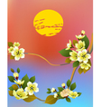 sakura Evening in the garden blooming cherry vector image