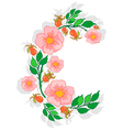 Abstract roses branch vector image