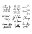 Lettering photography overlay set vector image