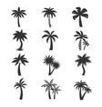 Tropical palm tree icons set Silhouettes vector image
