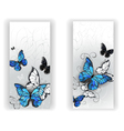 Two Banners with Butterflies Morpho vector image