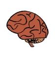 human brain idea creativity sketch vector image