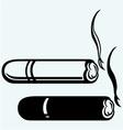 Cigarette burns havana cigar burned vector image