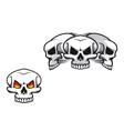 danger skulls vector image