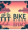 BMX Bike Riding Poster vector image