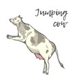 the cow jumped vector image