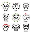 cute panda asian bear vector image