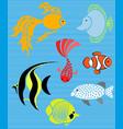 set isolated fish flat design fish aquarium vector image