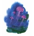 Watercolor Hand drawn jellyfish at Sea vector image