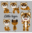 Emotions baby tiger on a gray background vector image