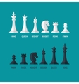 Chess pieces king queen bishop knight rook pawn vector image