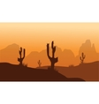 Sunset with Cactus in Desert vector image