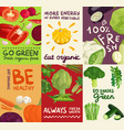 vegetables posters and banners set vector image