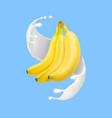 banana in milk splash or yogurt realistic vector image