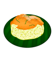 Sticky Rice with Fried Shrimp and Shred Coconut vector image