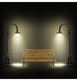 Bench Illuminated By Street Lamps vector image