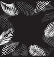 palm leaf border vector image