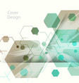 abstract hexagon background for business web vector image